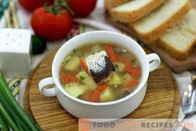 Zupa rybna w puszkach