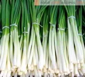 Как да замрази зеления лук за зимата