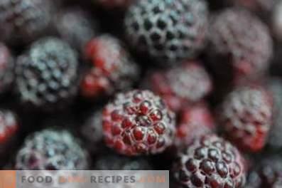 Blackberry: przydatne właściwości i przeciwwskazania