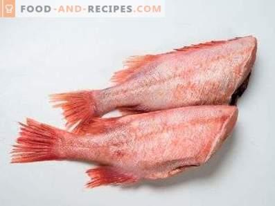 Sea Bass: korzyści i szkody